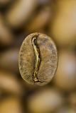 brazylijska kawa Obraz Royalty Free