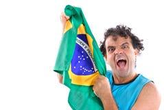 brazylijski fanów Obraz Royalty Free