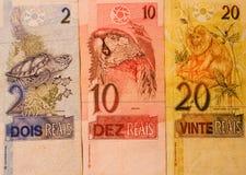 brazylijski pieniądze Zdjęcie Stock