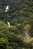 Brazylijski tropikalny krajobraz Zdjęcia Royalty Free