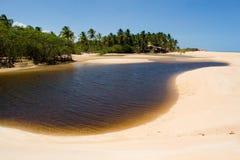 Brazylijskie plażowy tropikalny fotografia royalty free