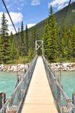 Brücke über Vermilion Fluss bei Kootenay nationales P Lizenzfreie Stockbilder
