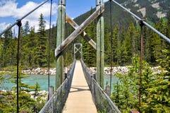 Brücke über Vermilion Fluss bei Kootenay NP Stockfotografie