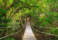 Brücke zum tiefen Dschungel Stockbilder