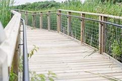 Brücken-Fußweg über Sumpf im Park Stockfotos