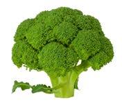 Brócolos Fotos de Stock Royalty Free