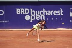 BRD Bucharest Open 2015 Stock Photography