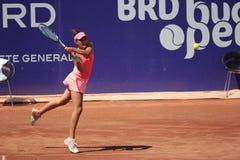 BRD Bucharest Open 2015 Stock Images