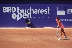 BRD Bucharest Open 2015 Royalty Free Stock Image
