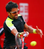 BRD Nastase Tiriac Trophy Open Janko TIPSAREVIC- Thomas FABBIANO Royalty Free Stock Images