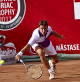 BRD Open : Joao SOUZA (BRA) vs Tommy ROBREDO (ESP). Tommy ROBREDO (ESP) hits a slice in the tennis match against Joao SOUZA (BRA) at BRD Nastase Tiriac Trophy ( Stock Images