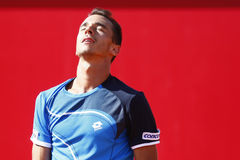 BRD Open 2013 Singles Final : Lukasz Rosol- Garcia Lopez Stock Photos