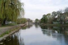 Ποταμός Brda. Στοκ εικόνα με δικαίωμα ελεύθερης χρήσης