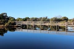 Brädet går över våtmarkerna på det stora träsket Bunbury västra Australien i sen vinter. Arkivfoton