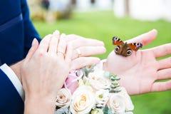 Brdie et mains de marié avec le papillon Images libres de droits