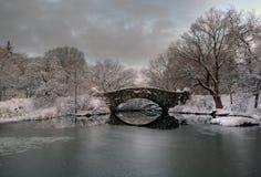 brdige gapstow θύελλα χιονιού στοκ εικόνες