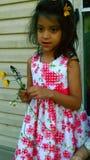 Bre met flowerd stock foto's