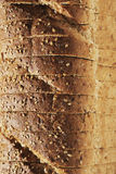Bread. Stack of sliced bread in closeup royalty free stock photos