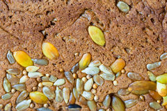 Bread. Whole brown healthy bread with grain and seeds Stock Photos