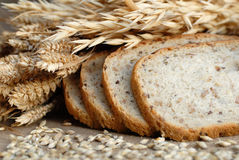 Bread. Bake goods and corn materials Stock Photography