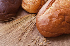 Bread. Composition of bread and wheat spikelets royalty free stock photo