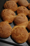 Bread. Image of bread cobs in baking tray Stock Photography