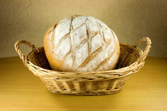 Bread. French bread on bakery basket Royalty Free Stock Images