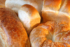Bread. Fresh baked various kind of bread Royalty Free Stock Image