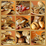 Bread. Collection and collage of bread royalty free stock photography