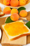 Bread with apricot jam Stock Images