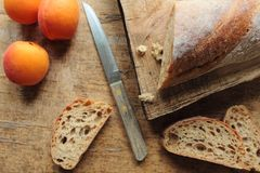 Bread with apricots Stock Image