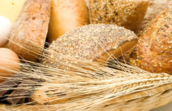 Free Bread Background Royalty Free Stock Photos - 5670278