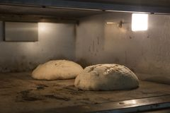 The bread baked stock photo