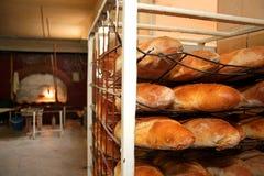 Bread in bakery Royalty Free Stock Photo