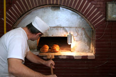 Bread in bakery Royalty Free Stock Image