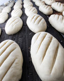 Bread at the bakery. Baked Breads on the production line at the bakery Royalty Free Stock Images