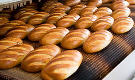 Bread at the bakery. Baked Breads on the production line at the bakery Royalty Free Stock Photography