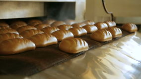Bread bakery food factory production stock video footage