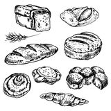 Bread  and bakery. Vintage hand drawn sketch style bakery set. Set of fresh bread. Hand drawn illustration of bread  and bakery product. Bakery  hand drawn Royalty Free Stock Images