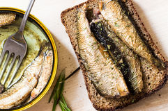 Bread with Baltic sprats Stock Image