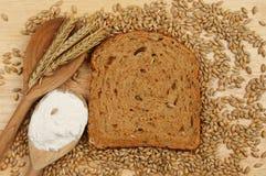 Bread and barley Royalty Free Stock Photo