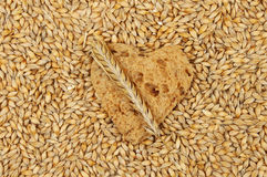 Bread and barley Royalty Free Stock Photography