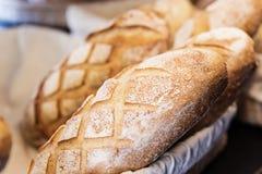 Bread - Bolillo stock images