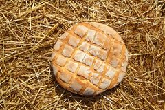 Bread bun round on golden wheat straw Royalty Free Stock Photo