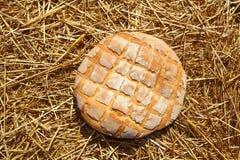 Bread bun round on golden wheat straw royalty free stock photo