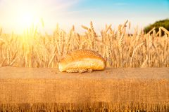 Bread bun with sesame seeds lying on a table Royalty Free Stock Photography