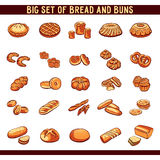 Bread And Buns Collection Stock Image