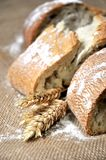 Bread and cereal in textil background Stock Photos