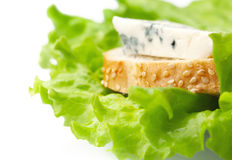 Bread and cheese on leaves of salad. Sandwich from bread and blue cheese on leaves of green salad Stock Images