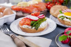 Bread with cheese, salmon and asparagus. Different Healthy Eating. Delicious breakfast for the family.  Stock Photos